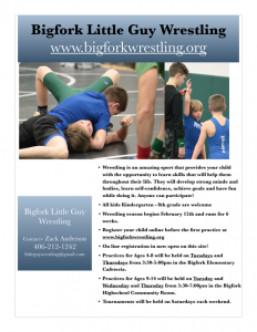 Bigfork Little Guy Wrestling Flyer